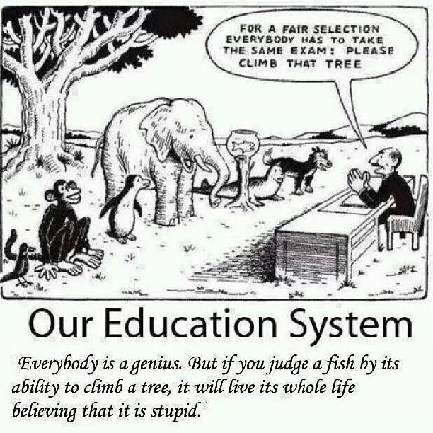 [Image] Everyone is a genius