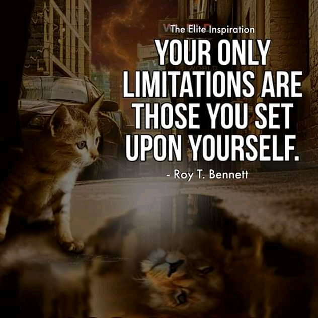 """Your Only Limitations Are Those You Set Upon Yourself."" – Roy T.Bennett – [1200×2000]"