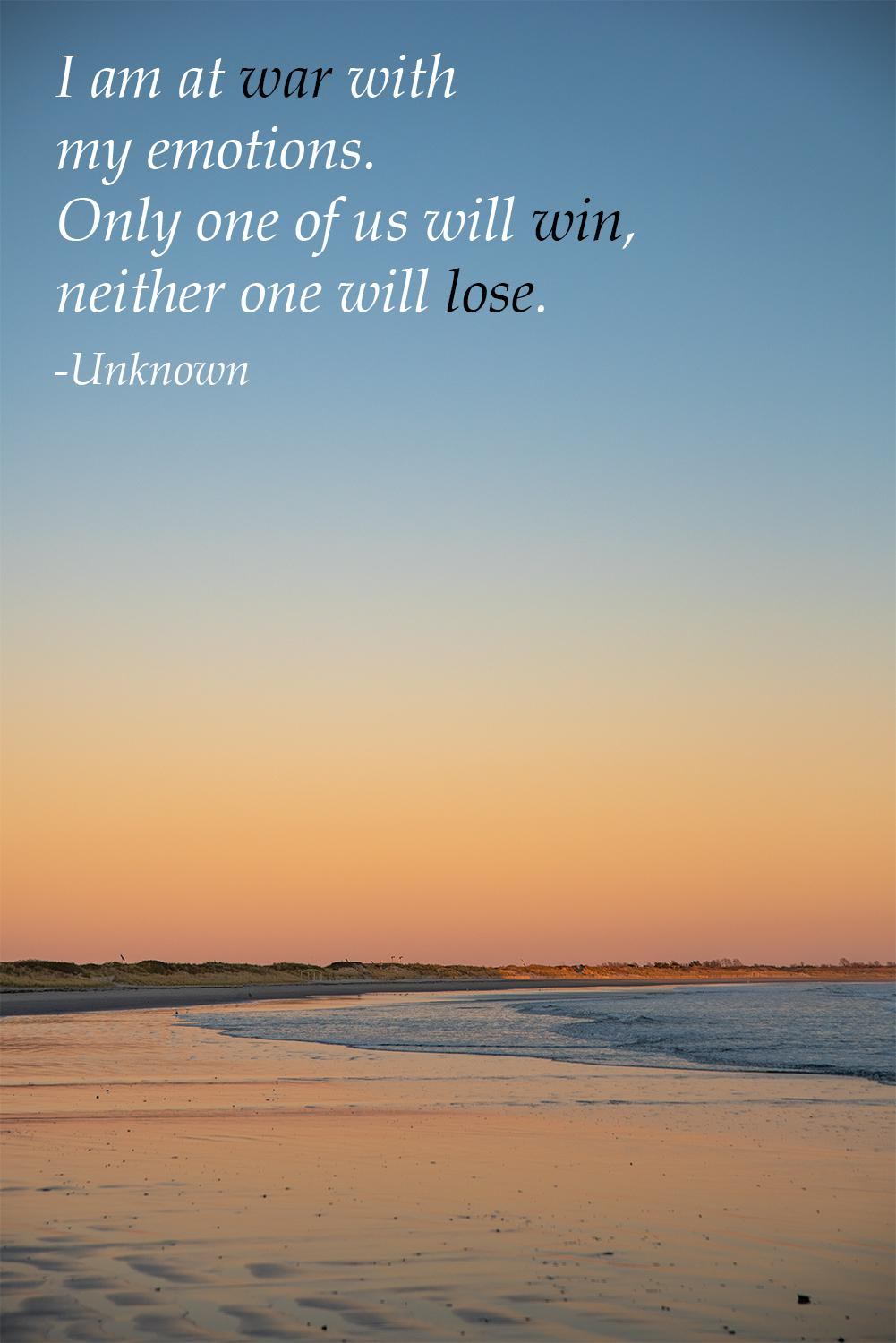 """I am at war with my emotions. Only one of us will win, neither one will lose."" -Unknown [1001×1500]"