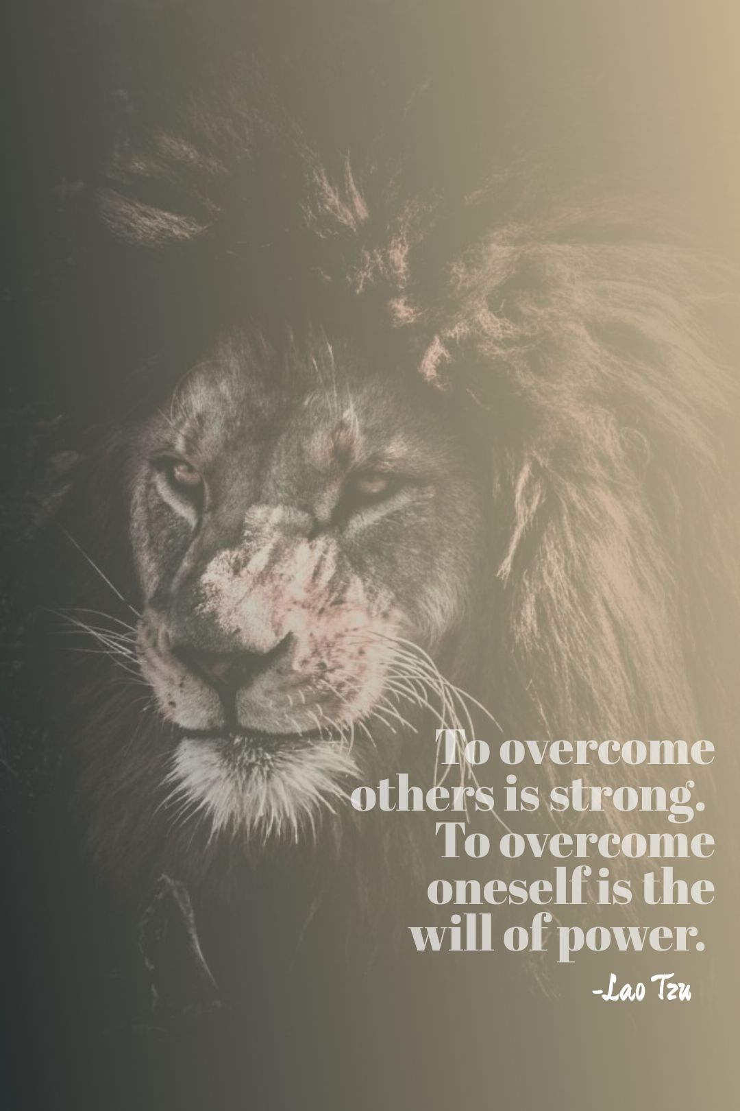 To overcome others is strong. To overcome oneself is the will of power. -Lao Tzu (Tao Te Ching). [1080×1620]