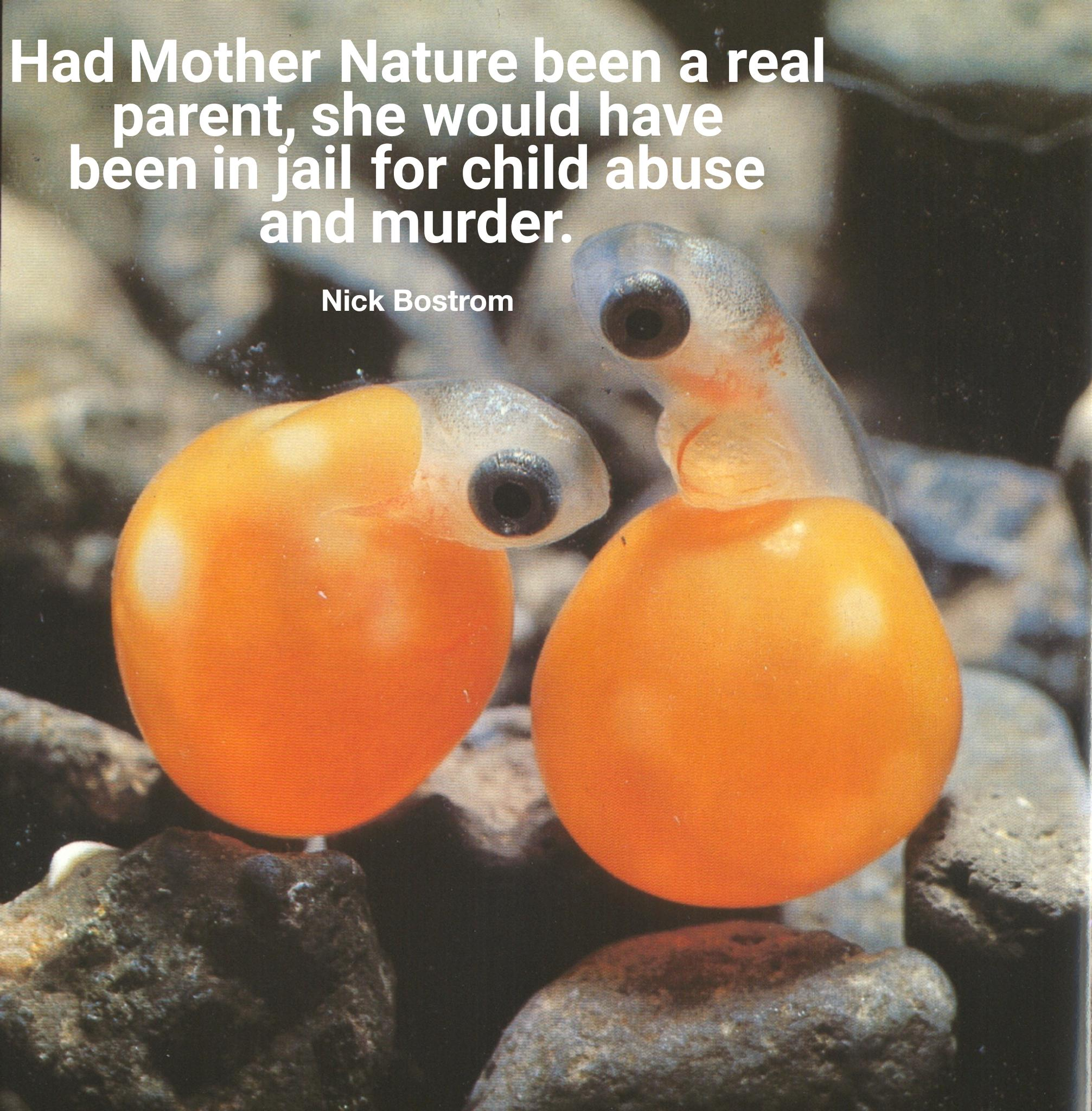 """Had Mother Nature been a real parent, she would have been in jail for child abuse and murder."" -Nick Bostrom [2013×2048]"