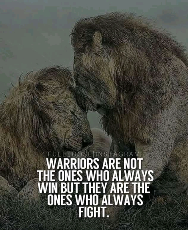 """Warriors Are Not The Ones Who Always Win But They Are The Ones Who Always Fight."" – Unkown – [1500×2000]"