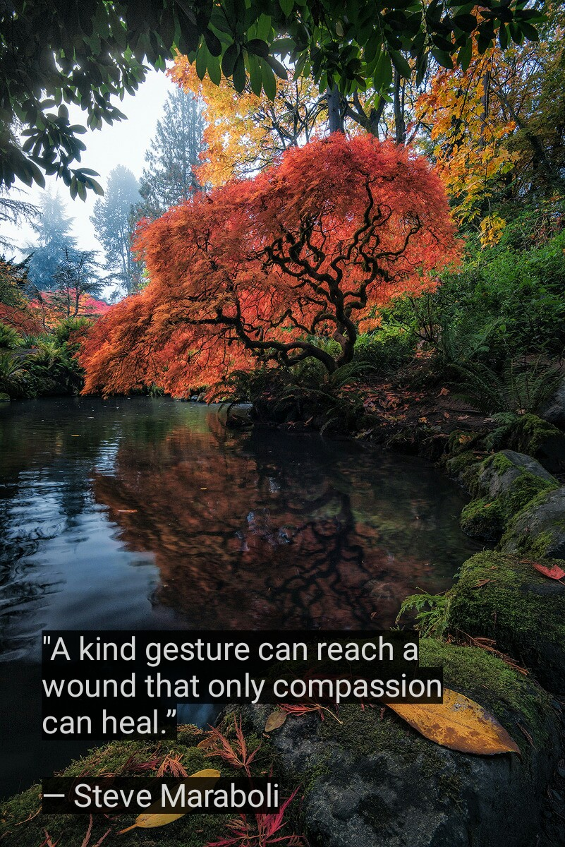"""A kind gesture can reach a wound that only compassion can heal."" — Steve Maraboli (800×1200)"
