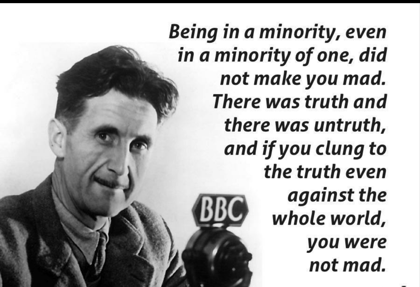 Being in a minority, even in a minority of one, did not make you mad. There was truth and there was untruth, and if you clung to the truth even against the whole world, you were not mad.George Orwell(1200×850)