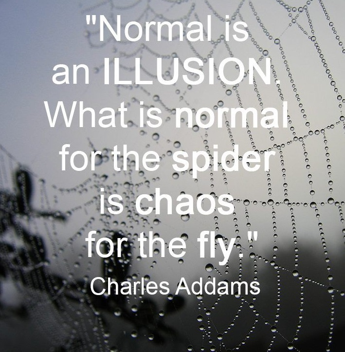 """Normal is an illusion. What is normal for the spider is chaos for the fly."" – Charles Addams(850×1020)"