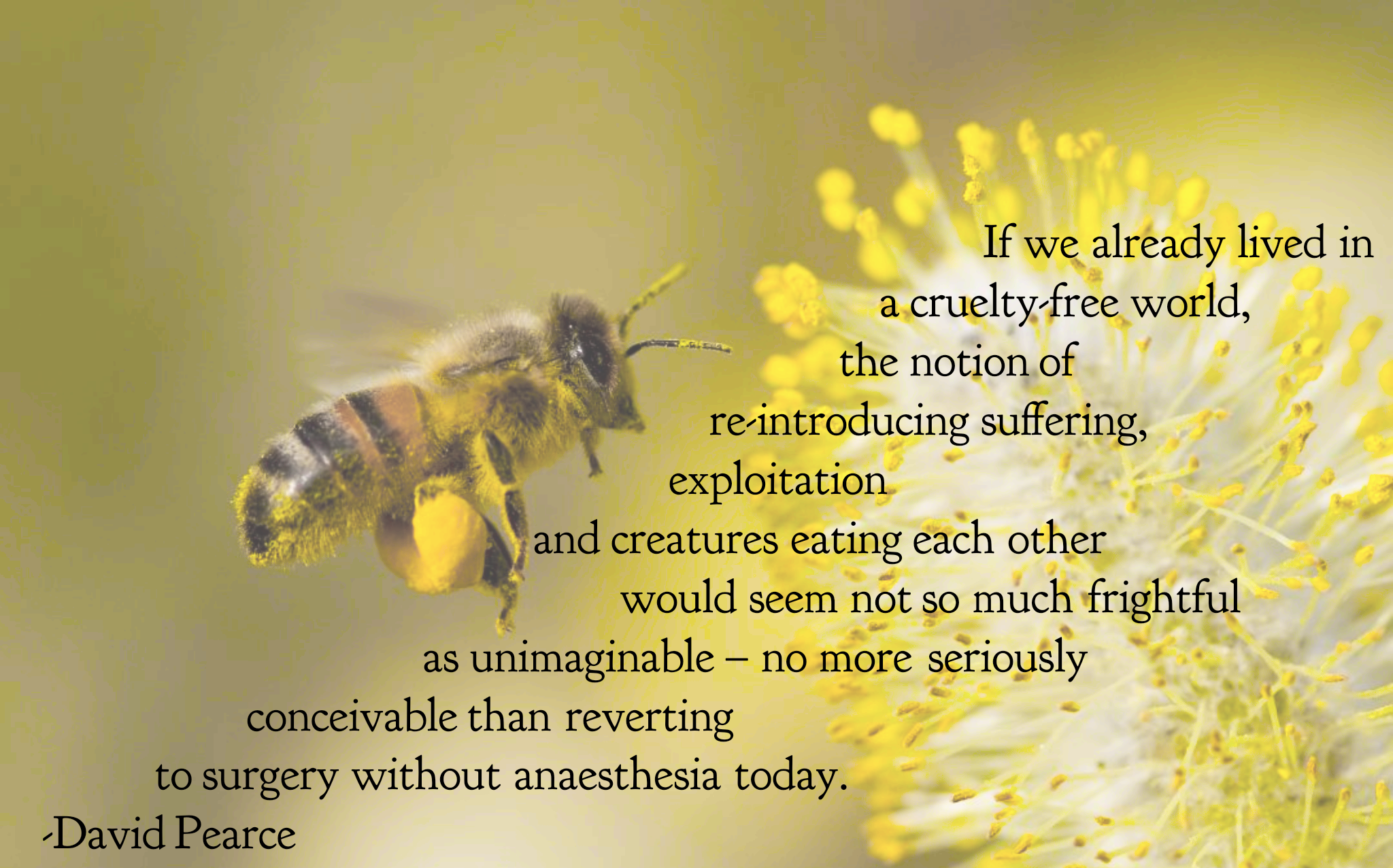"""If we already lived in a cruelty-free world, the notion of re-introducing suffering…"" -David Pearce [2048×1276]"