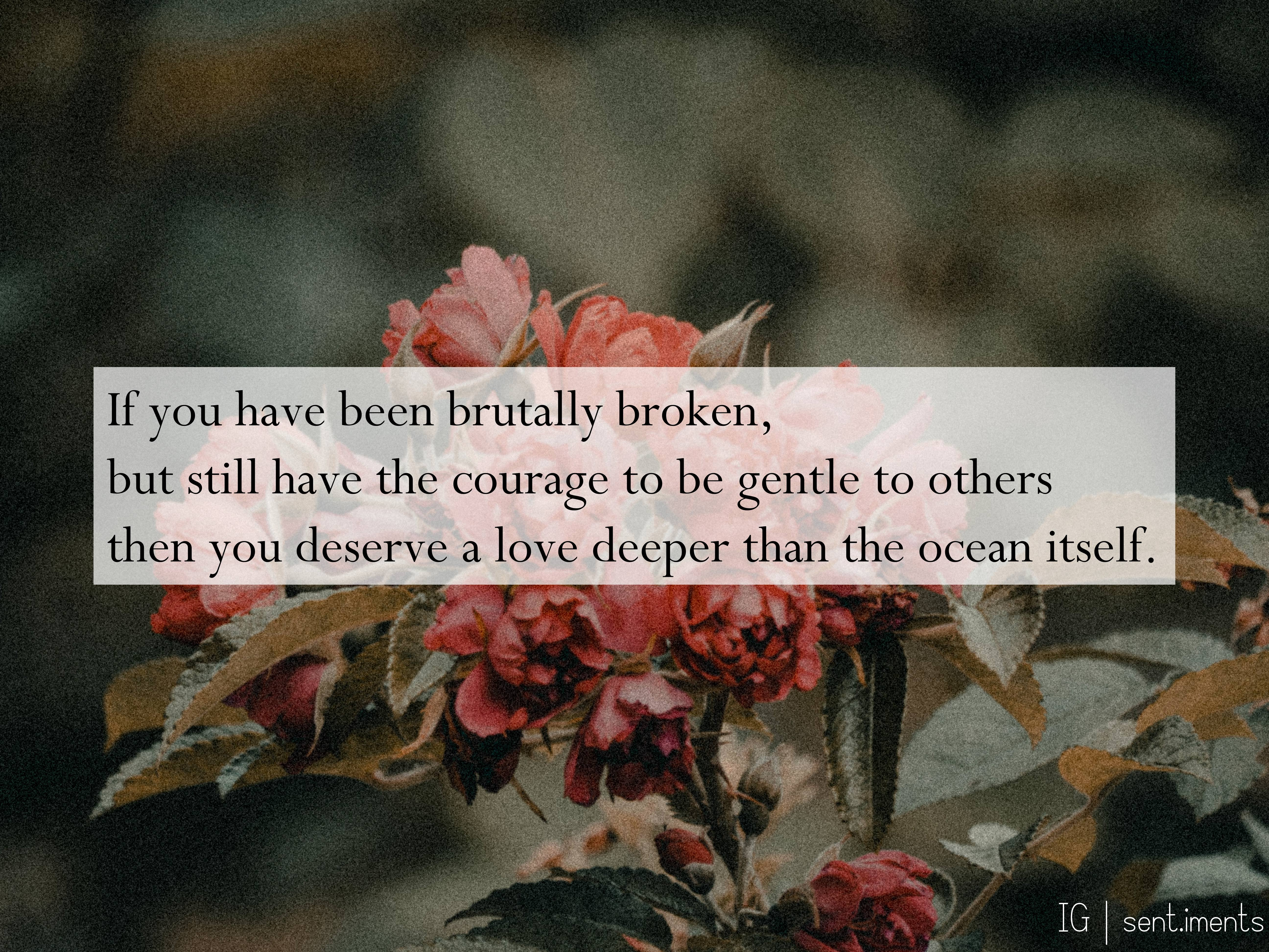 """If you have been brutally broken, but still have the courage to be gentle to others then you deserve a love deeper than the ocean itself."" By Nikita Gill [5184 X 3888]"