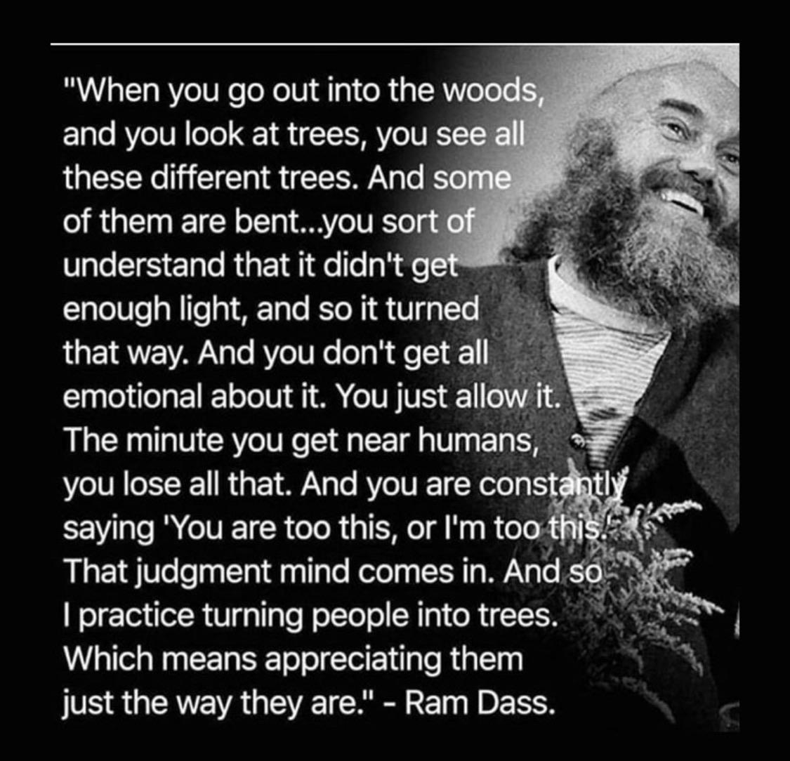 So I practice turning people into trees. Which means appreciating them just the way they are. – Ram Dass [Image]
