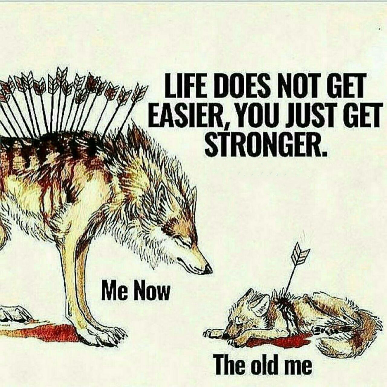 [image] TRY MORE, GET STRONGER