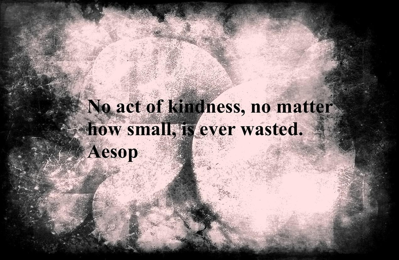 No act of kindness, no matter how small, is ever wasted. Aesop (1270×829)