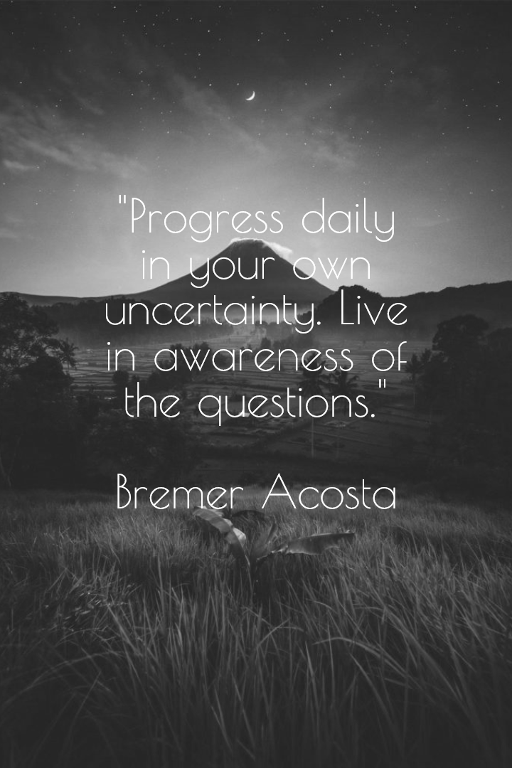 """Progress daily in your own uncertainty. Live in awareness of the questions."" – Bremer Acosta [720 x 1080]"