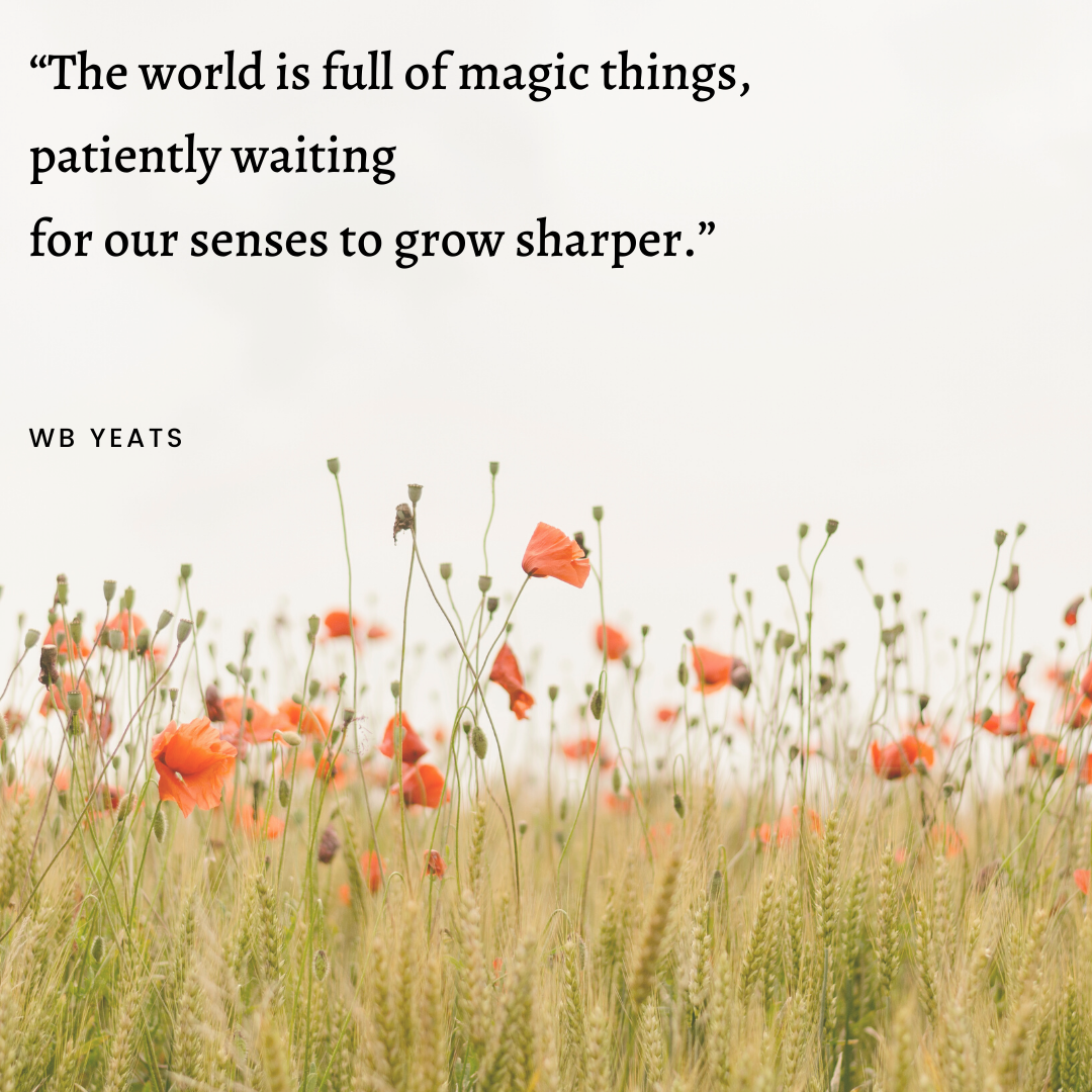 """The world is full of … "" – WB Yeats [1080×1080]"