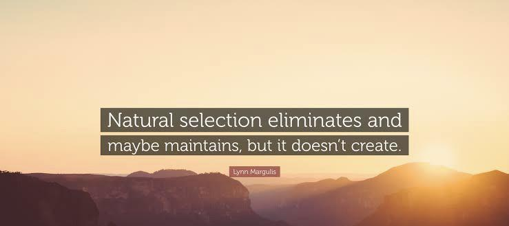 """Natural Selection…"" Lyon Margulis, [738×329]"