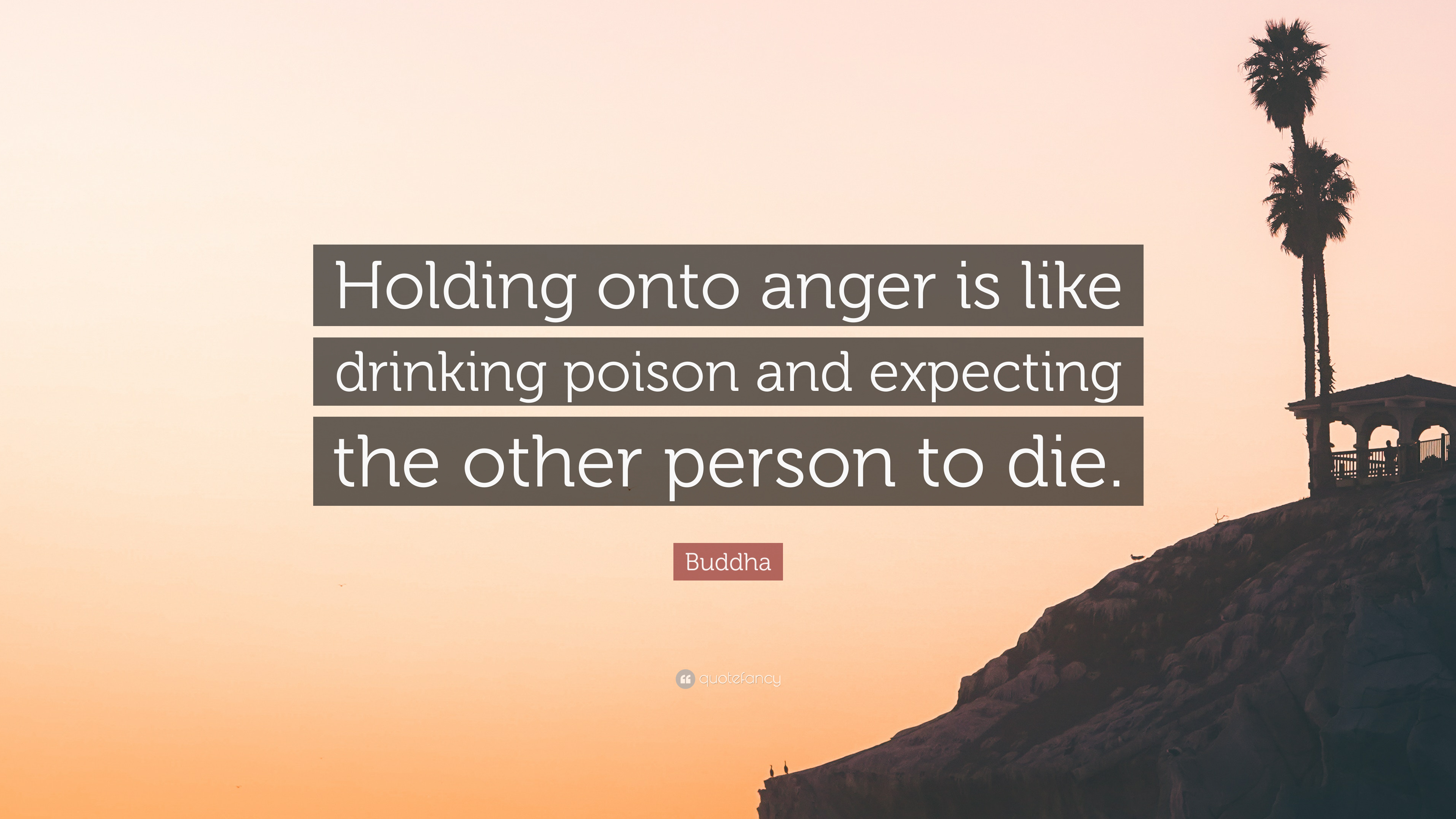 """Holding onto anger is like driking poison and expecting the other person to die."" – Buddha [3840×2160]"