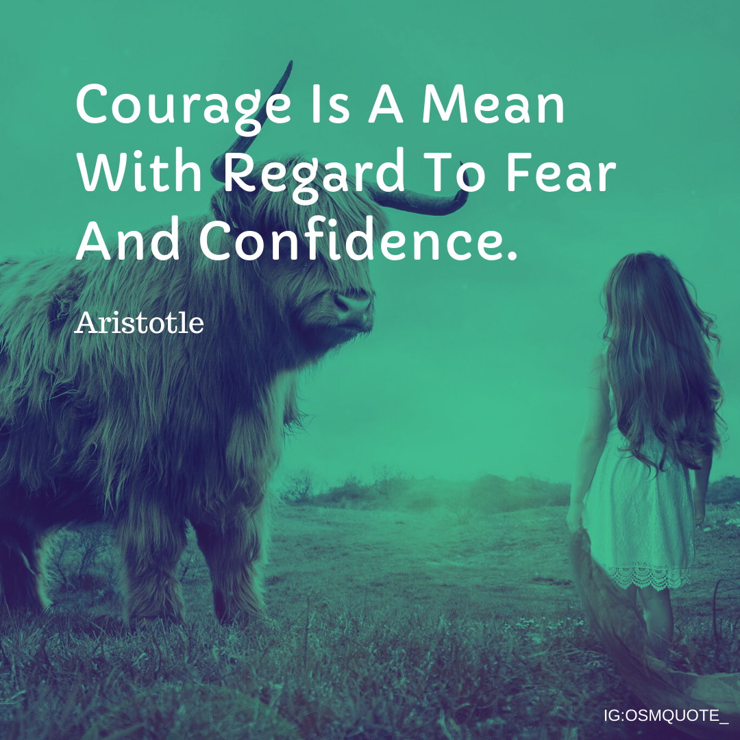 Courage Is A Mean With Regard To Fear And Confidence. Aristotle https://inspirational.ly