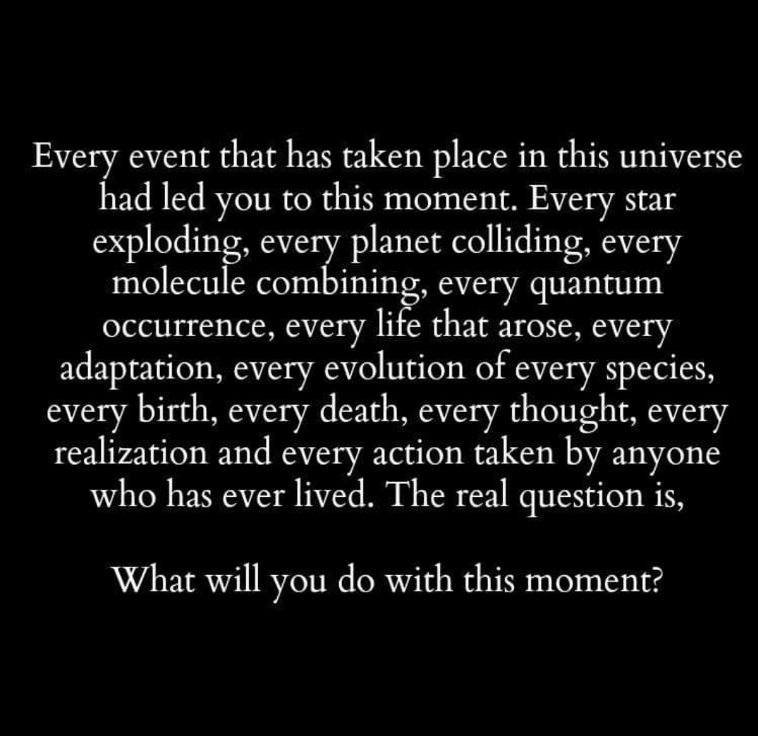 Every event that has taken place in this universe had led you to this moment. Every star exploding, every planet colliding, every molecule combining, every quantum occurrence, every life that arose, every adaptation, every evolution of every species, every birth, every death, every thought, every realization and every action taken by anyone Who has ever lived. The real question is, What will you do with this moment? https://inspirational.ly