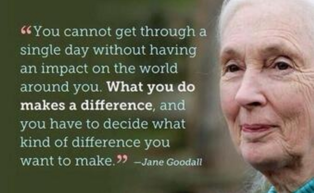 """"""" You cannot get through a single day without having ' an impact on the world around you. What you do makes a difference and' you have to decide what kind of difference you want to make. 3' -Jane Goodall https://inspirational.ly"""
