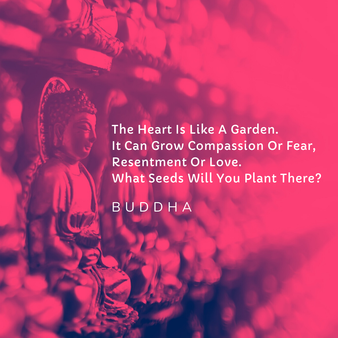 The Heart Is Like A Garden. It Can Grow Compassion Or Fear, Resentment Or Love. What Seeds Will You Plant There? – Gautam Buddha [1080×1080]