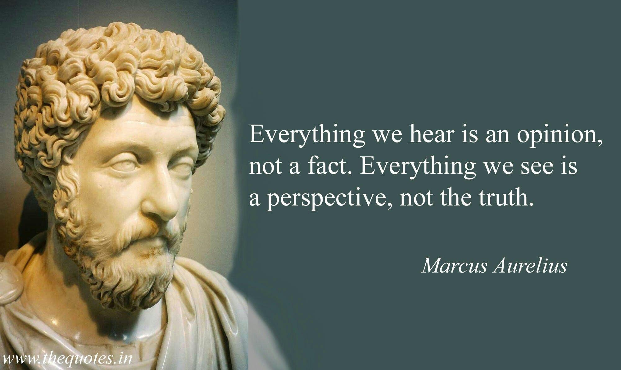 [Image] Everything we hear is an opinion, not a fact. Everything we see is a perspective, not the truth. – Marcus Aurelius