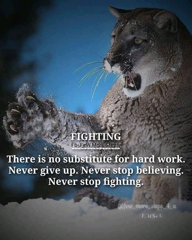Never Give Up , Never Stop Believing . – Wnknown [1200×2000]