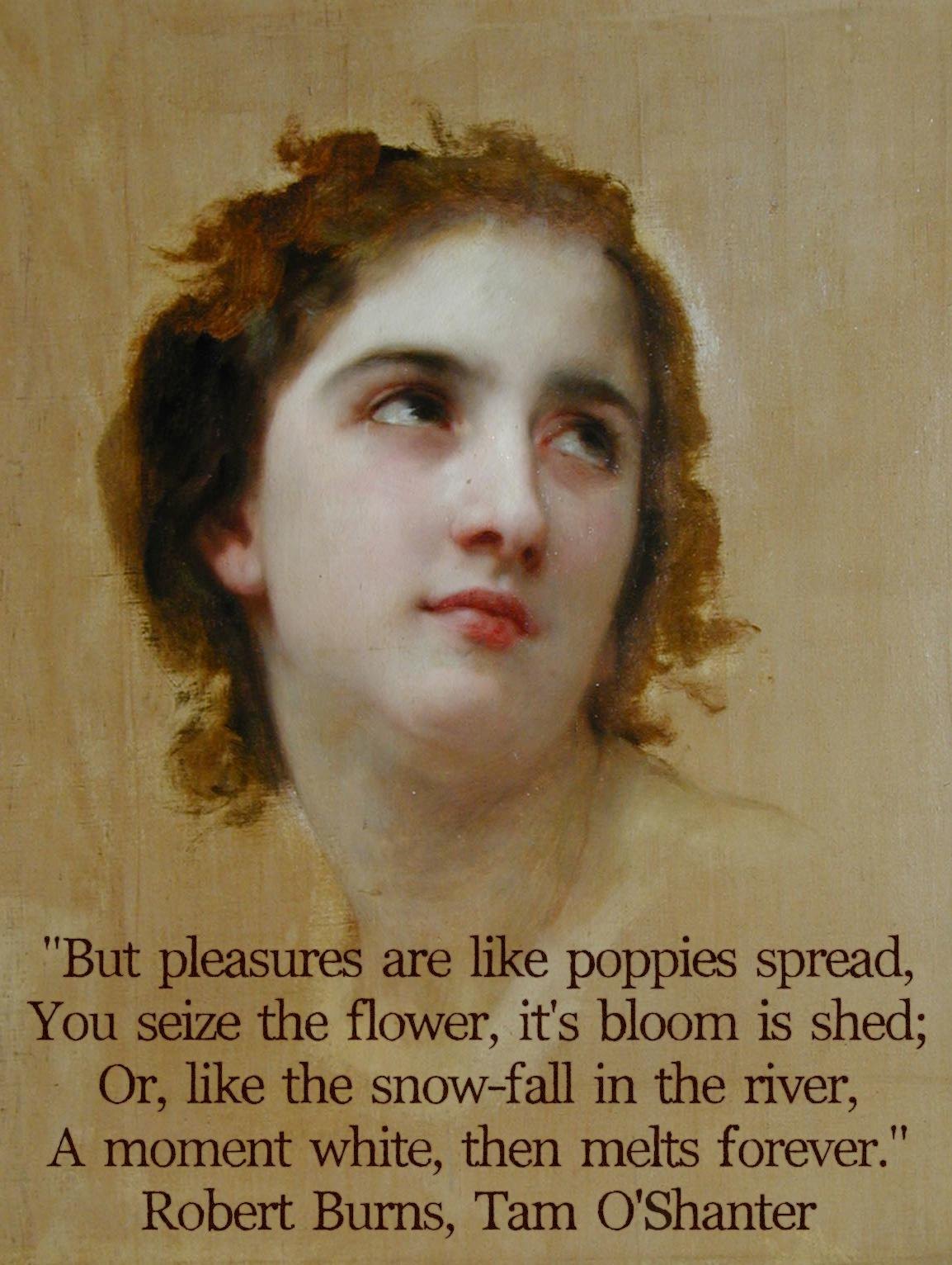 """But pleasures are like poppies spread, You seize the flower, it's bloom is shed; Or, like the snow-fall in the river, A moment white, then melts forever."" Robert Burns, Tam O'Shanter [1154×1532]"