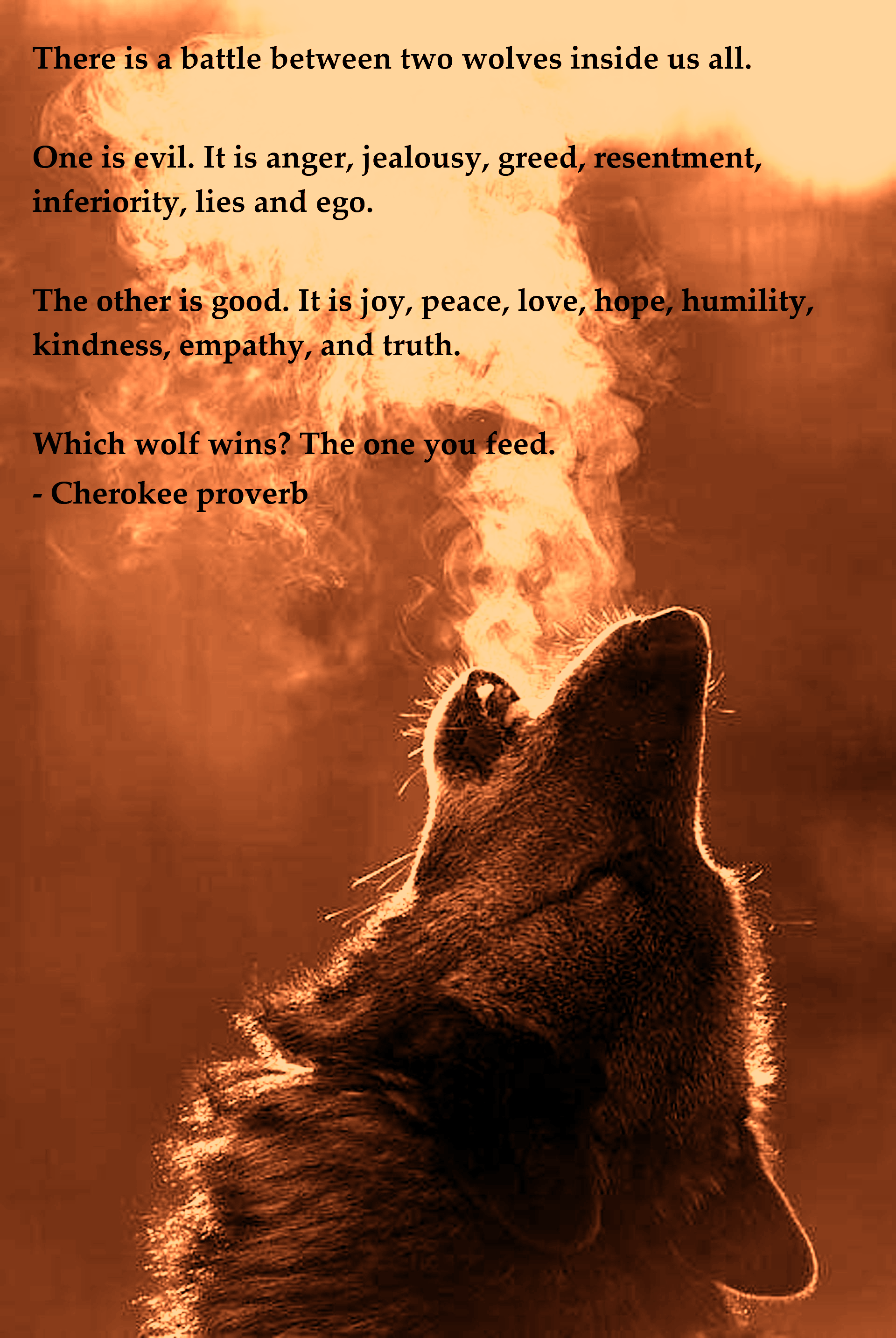 """The Fight of Two Wolves Within You."" – Cherokee proverb [1920×2867]"