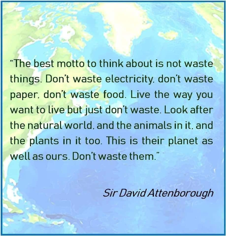 """The best motto to think about is not waste things…"" – Sir David Attenborough [918×960]"
