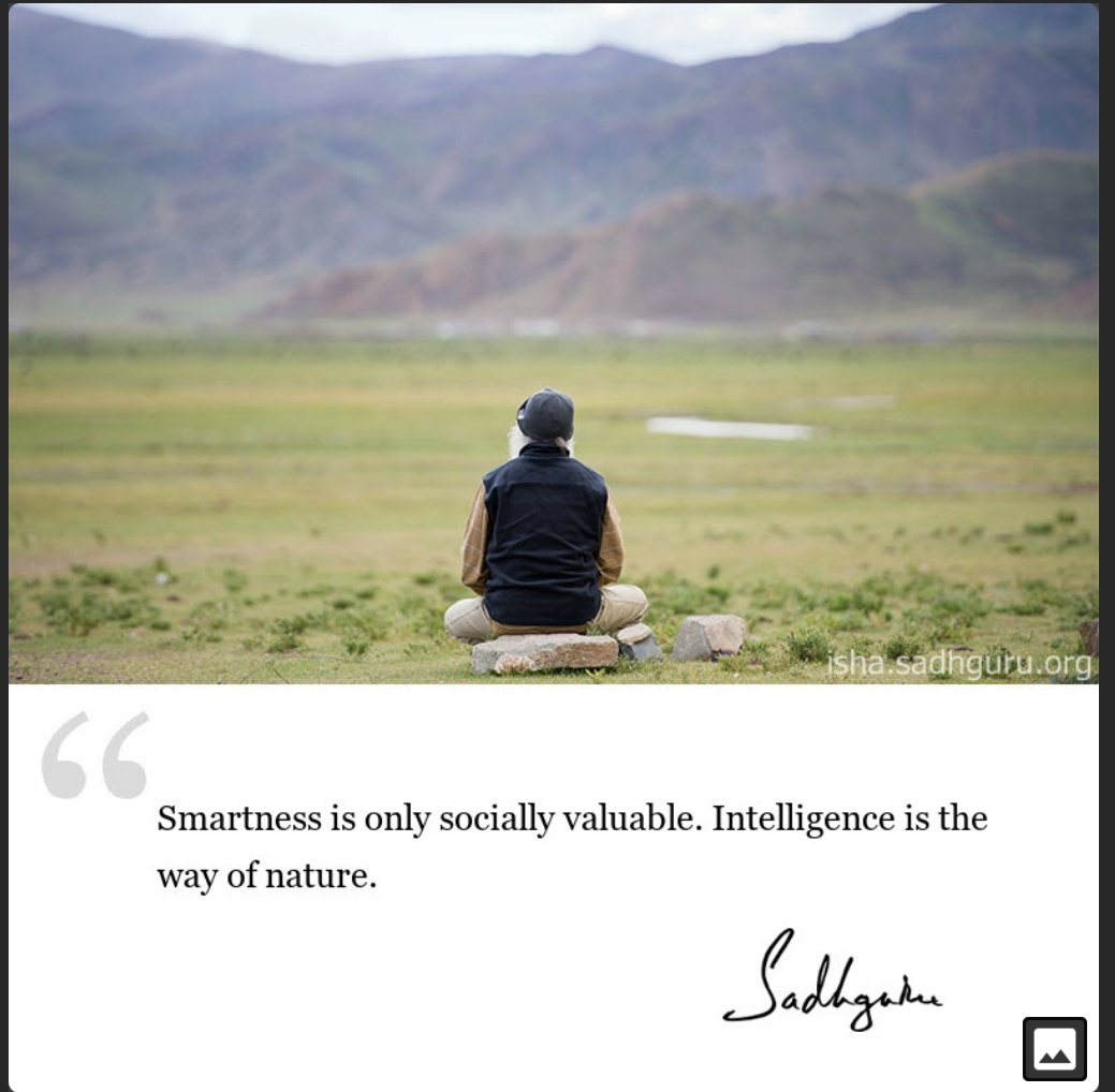Smartness is only socially valuable. Intelligence is the way of nature – Sadhguru (1039×1018)