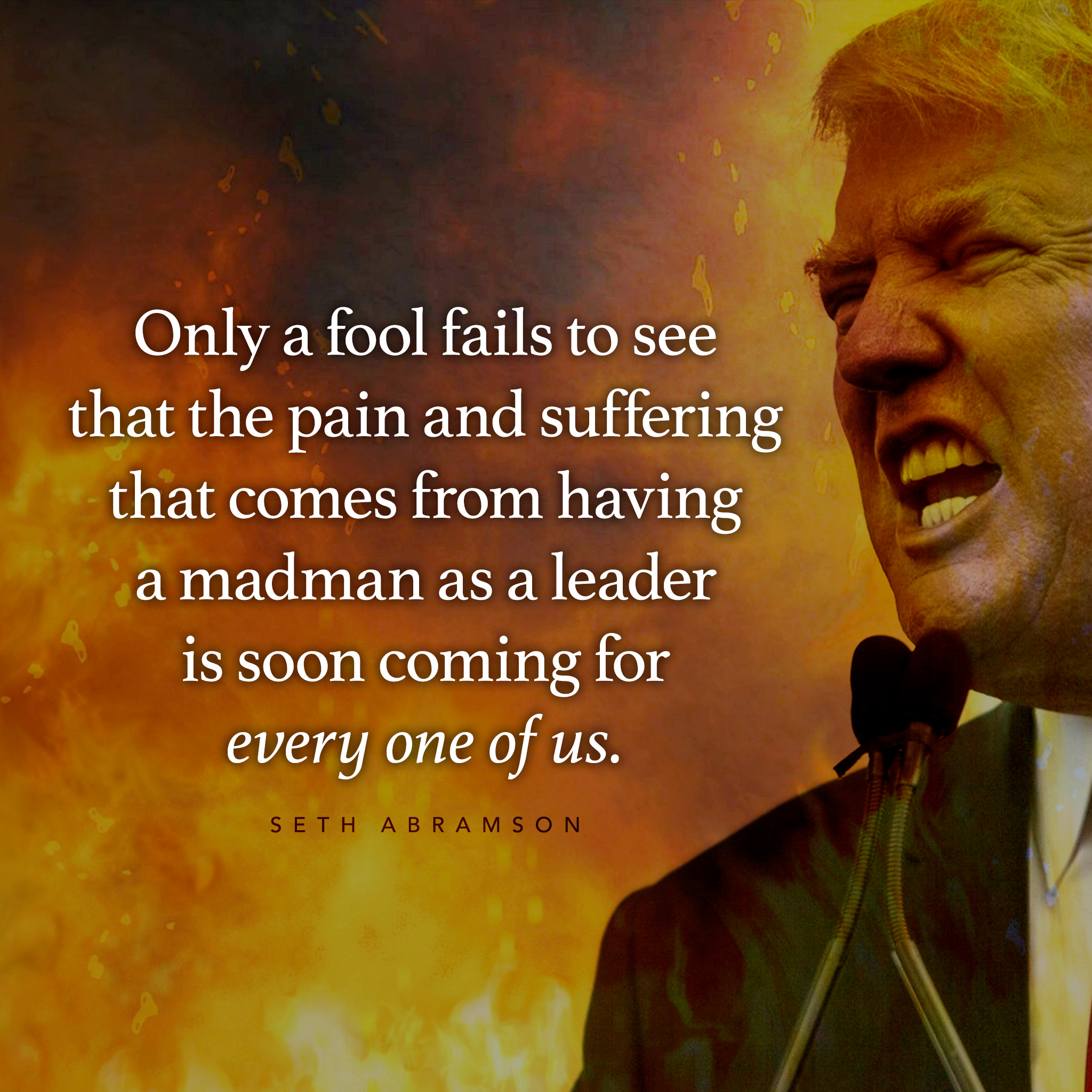 """Only a fool fails to see that the pain and suffering that comes from having a madman as a leader is soon coming for every one of us."" –Seth Abramson [2048×2048]"