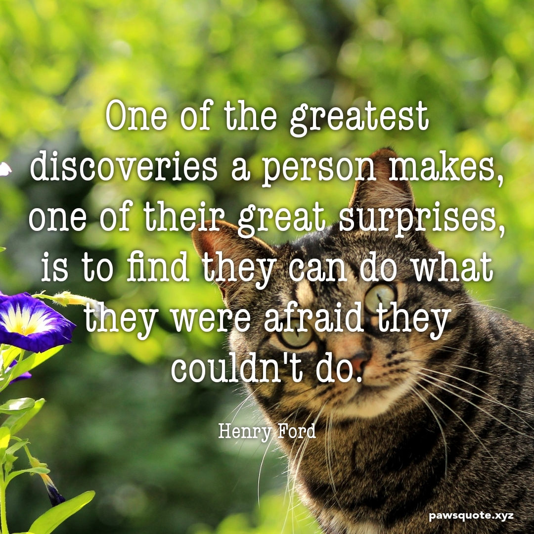 One of the greatest discoveries a person makes, …. Henry Ford (1080 x 1080)