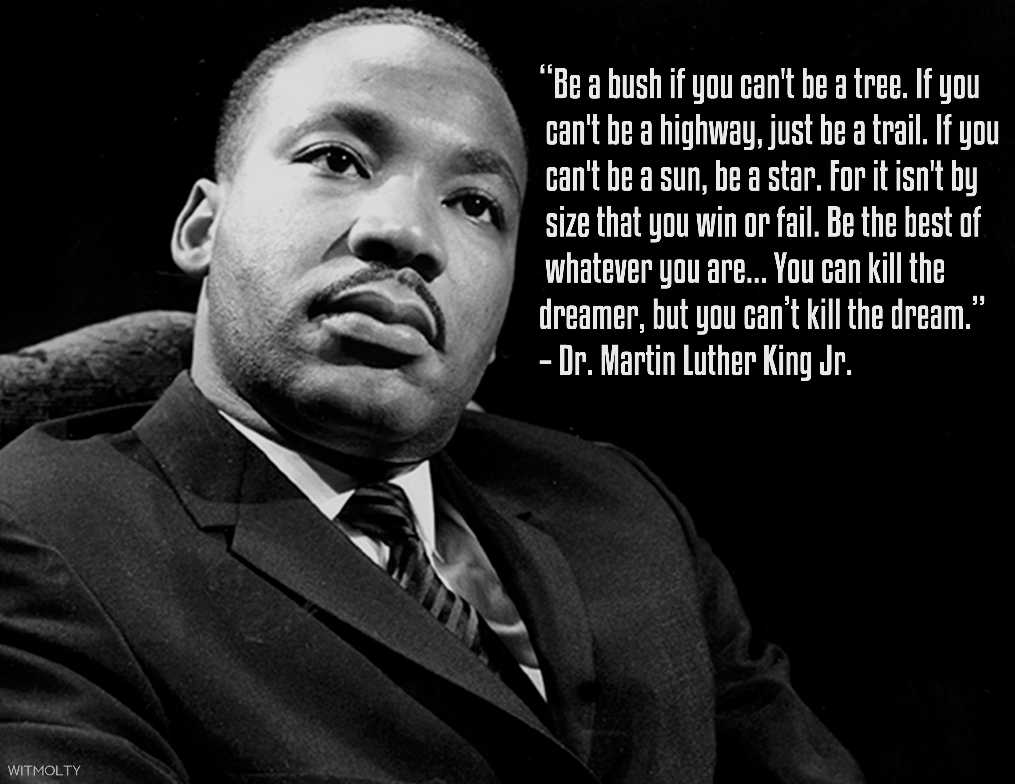 """""""Be a bush if you can't be a tree. If you can't be a highway, just be a trail. If you can't be a sun, be a star. For it isn't by size that you win or fail. Be the best of whatever you are. You can kill the dreamer, but you can't kill the dream."""" – Martin Luther King. Black History Month [3300×2550]"""
