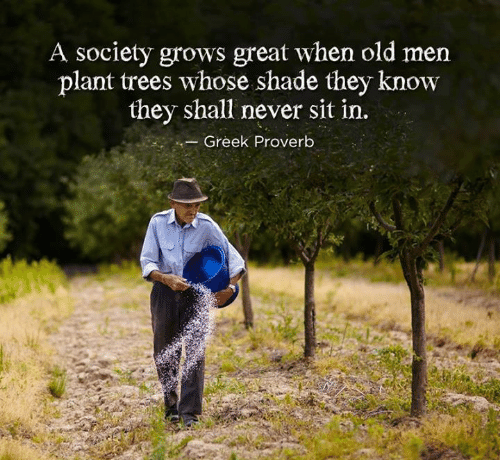 """A society grows great when old men plant trees in whose shade they know they shall never sit."" (Greek proverb) [500×460]"