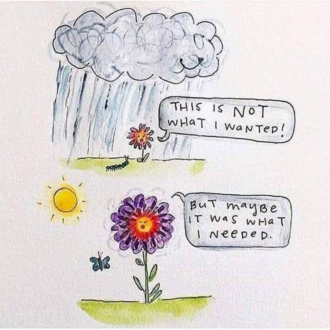 [image] We are all going to bloom.