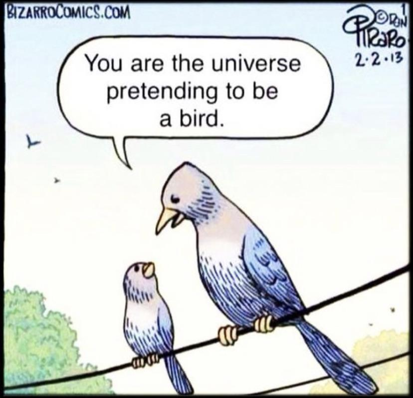[Image] You are the universe pretending to be a bird