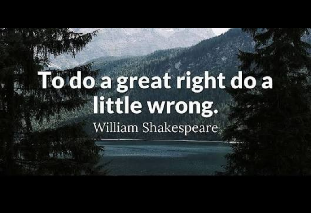 To do a great right do a little wrong. -Willam Shakespeare [1080*2240]