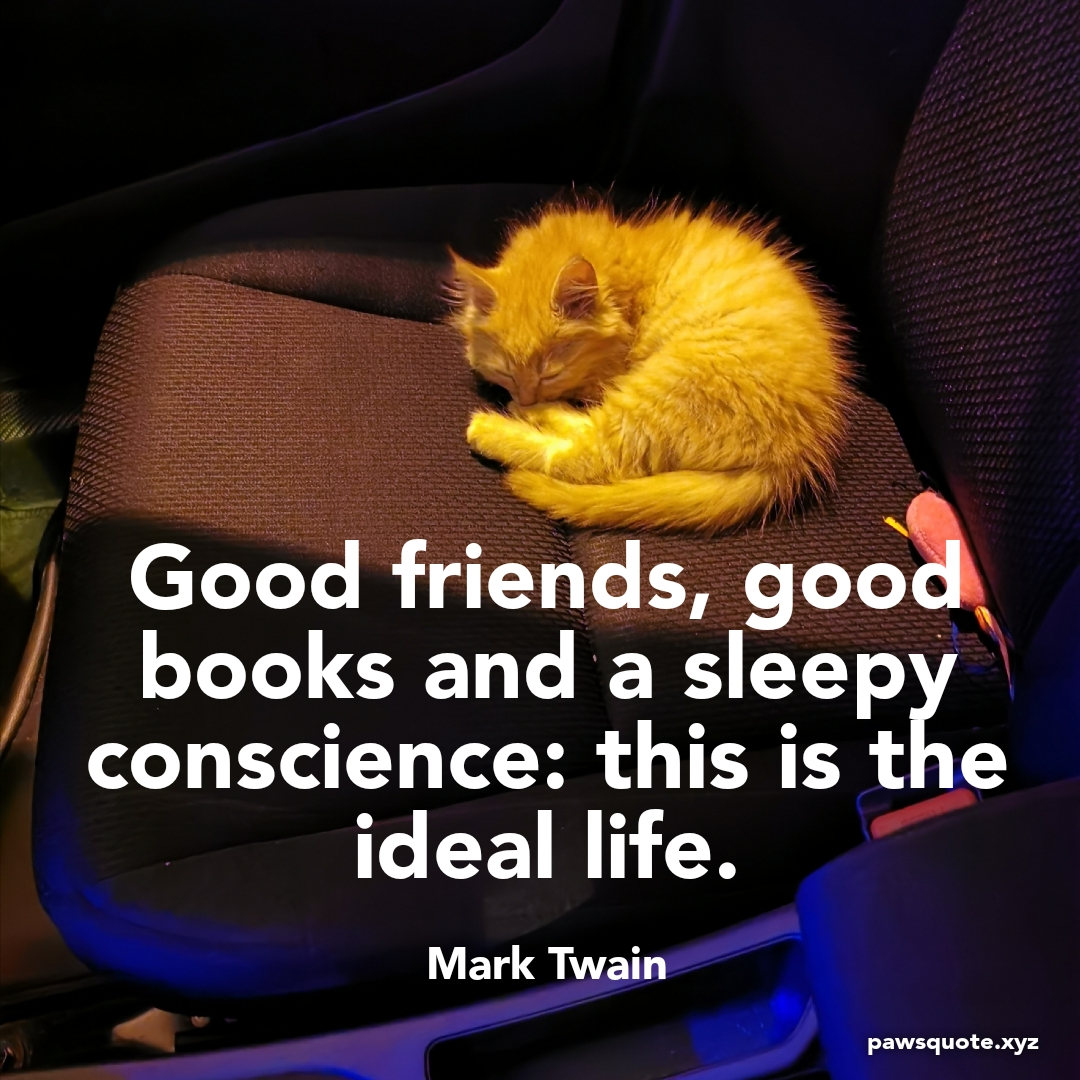 Good friends, good books and a sleepy conscience: this is the ideal life. Mark Twain (1080 x 1080)