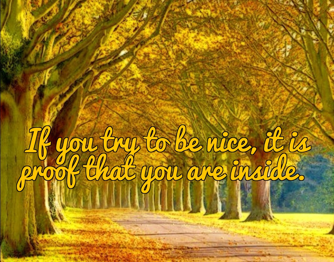 [Image] If you try to be mice you are nice.