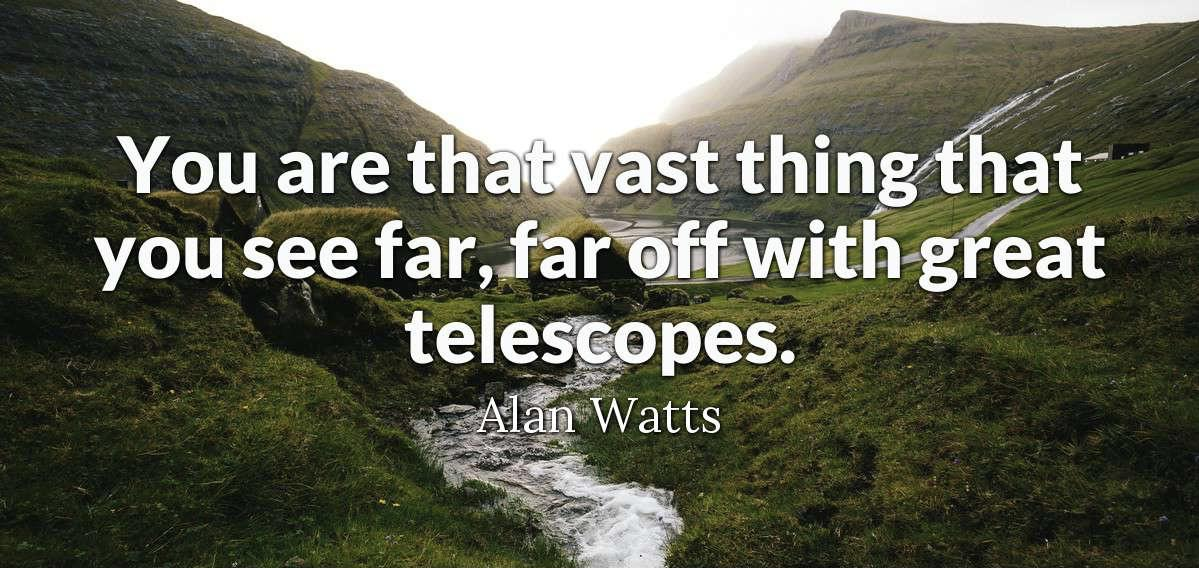 """You are that vast thing that you see far, far off with great telescopes."" – Alan Watts [1199×568]"