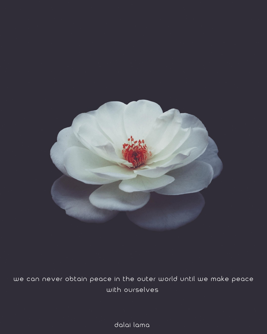 We can never obtain peace in the outer world until we make peace with ourselves – Dalai Lama (1080 x 1349)