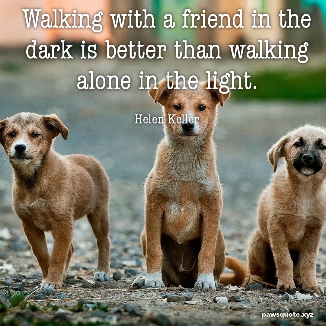 Walking with a friend in the dark is better than walking alone in the light. Helen Keller (1080 x 1080)