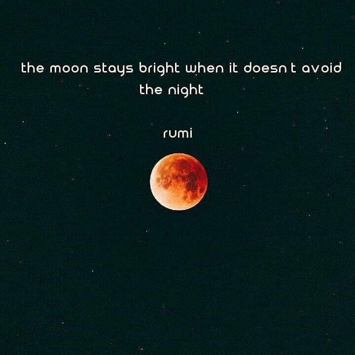 """The moon stays bright when it doesn't avoid the night."" ― Rumi [720 x 720]"