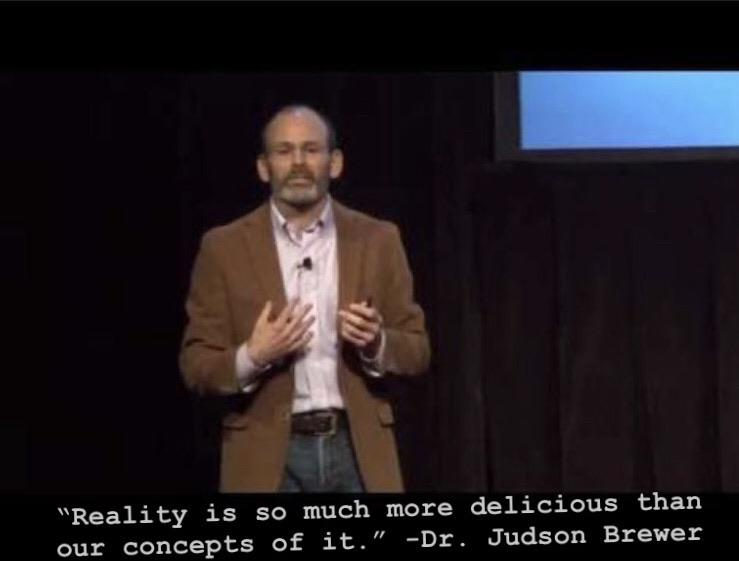 """Reality is so much more delicious than our concepts of it."" -Dr. Judson Brewer [480 x 360]"