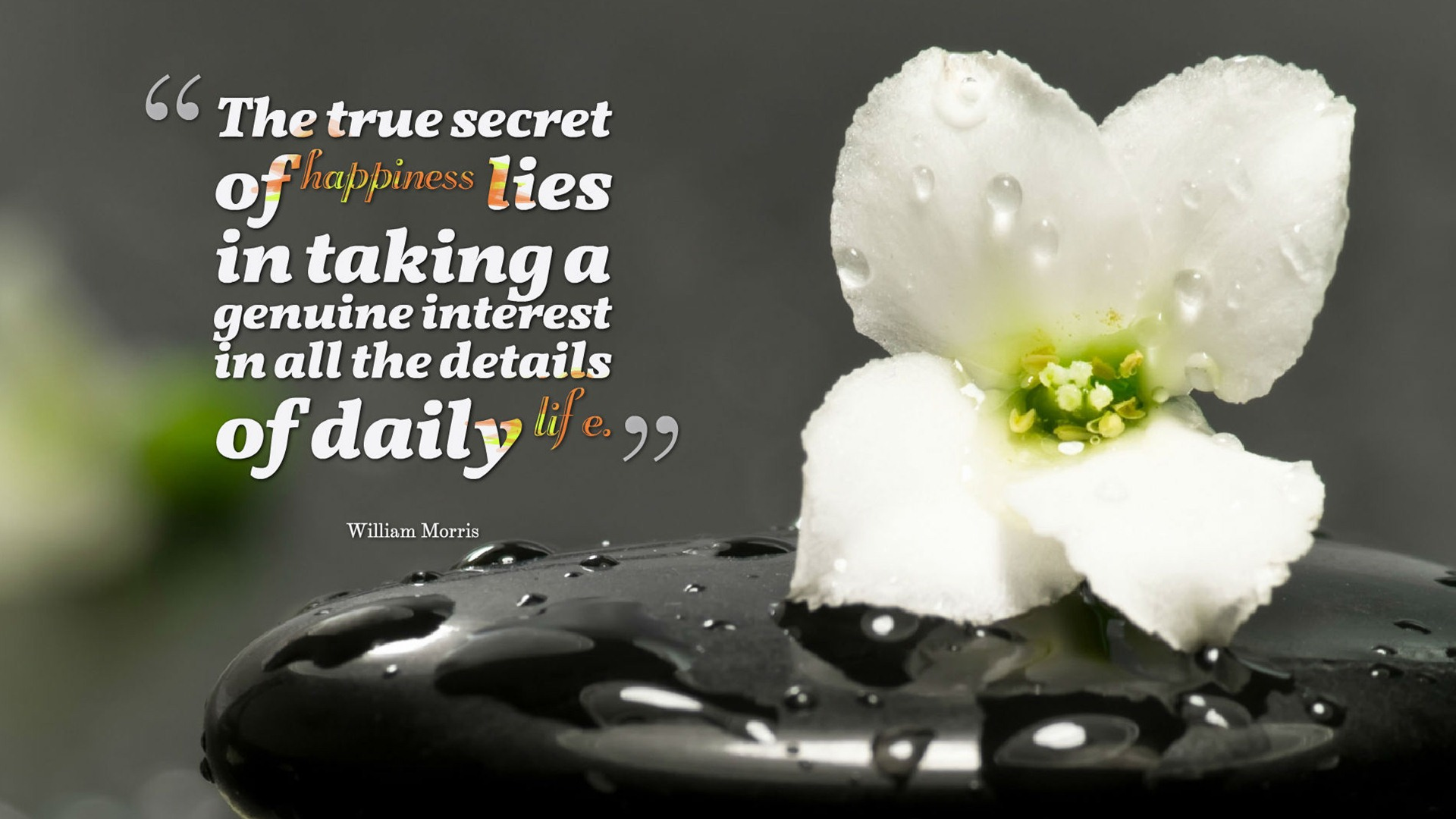 """The true secret of happiness lies in taking a genuine interest in all the details of daily life."" – William Morris [1920×1080]"