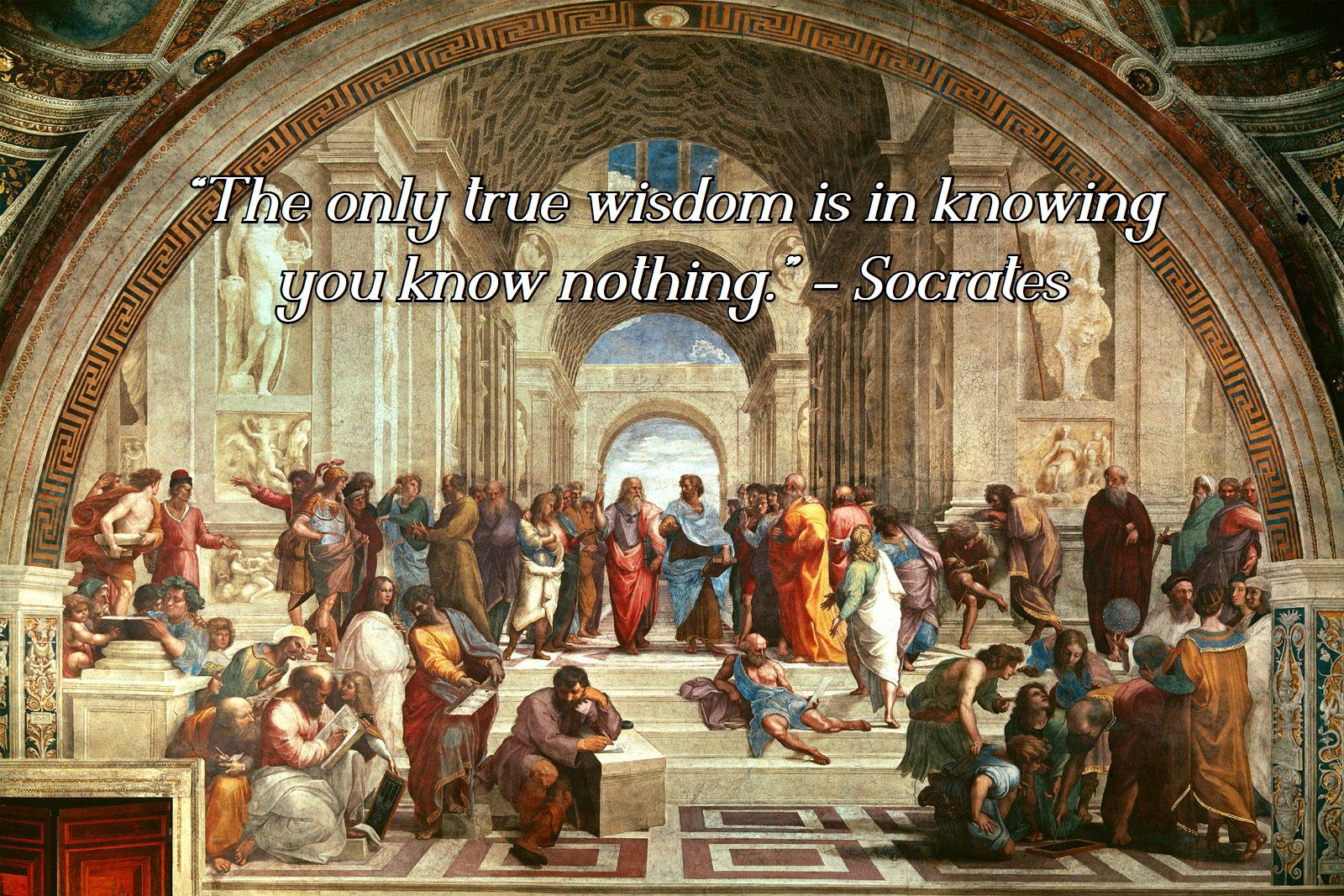 """The only true wisdom is in knowing you know nothing."" – Socrates [1600×1067]"