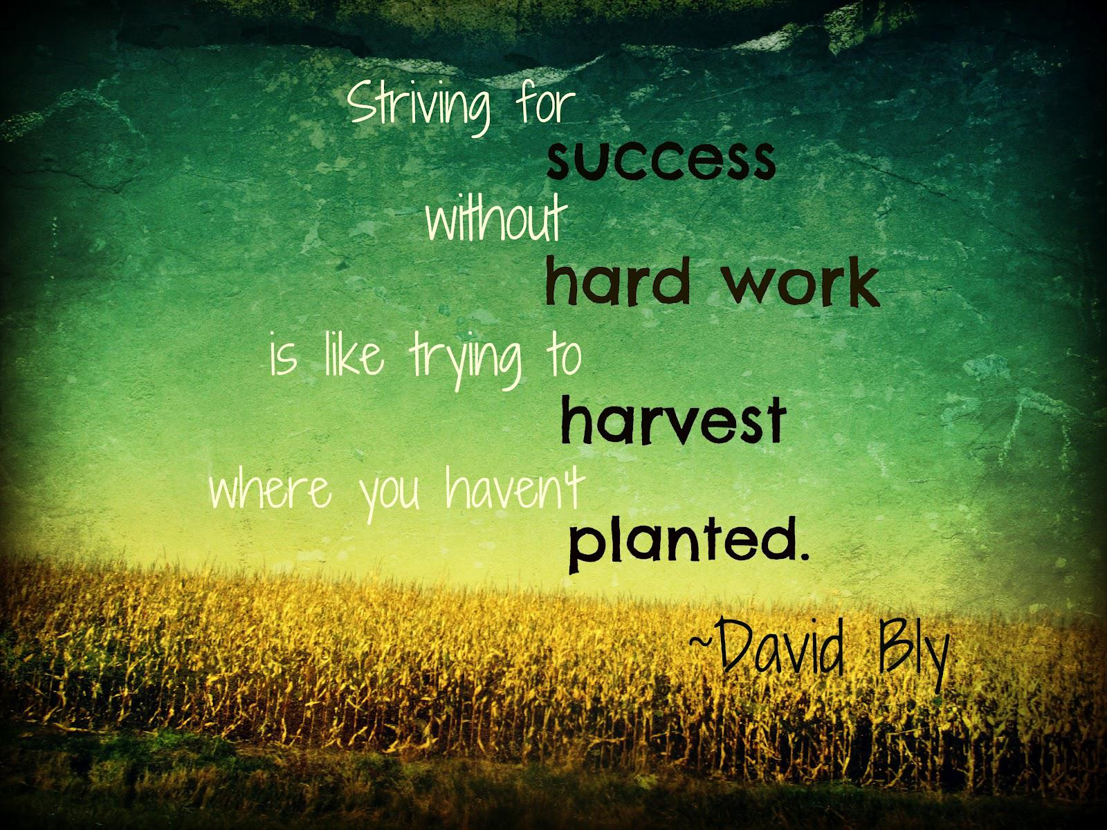 """ Striving for success without hard work is like trying to harvest where you haven't planted "" ~ David Bly [1600 x 1200]"