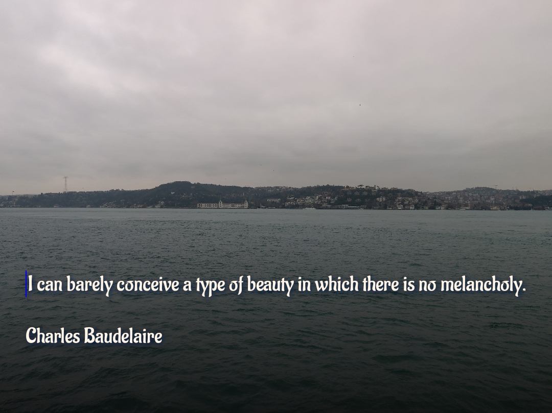 I can barely conceive a type of beauty in which there is no melancholy. Charles Baudelaire [1080×809]