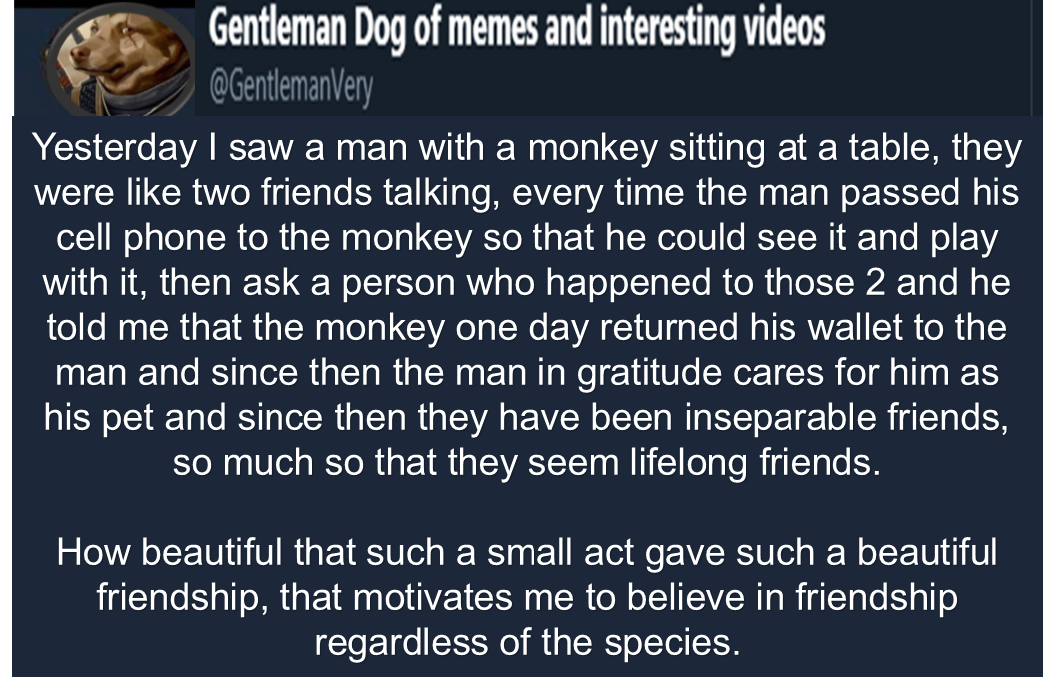 [Image] Friendship between men and animals one of the most beautiful things there can be (video of the man and the monkey in the comments)