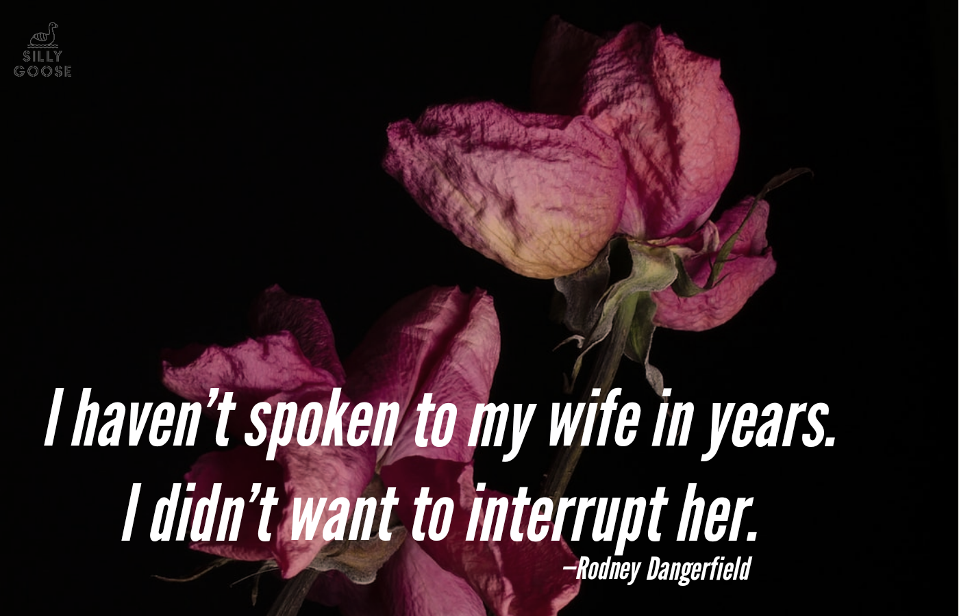 """I haven't spoken to my wife in years. I didn't want to interrupt her."" —Rodney Dangerfield [1400×900]"