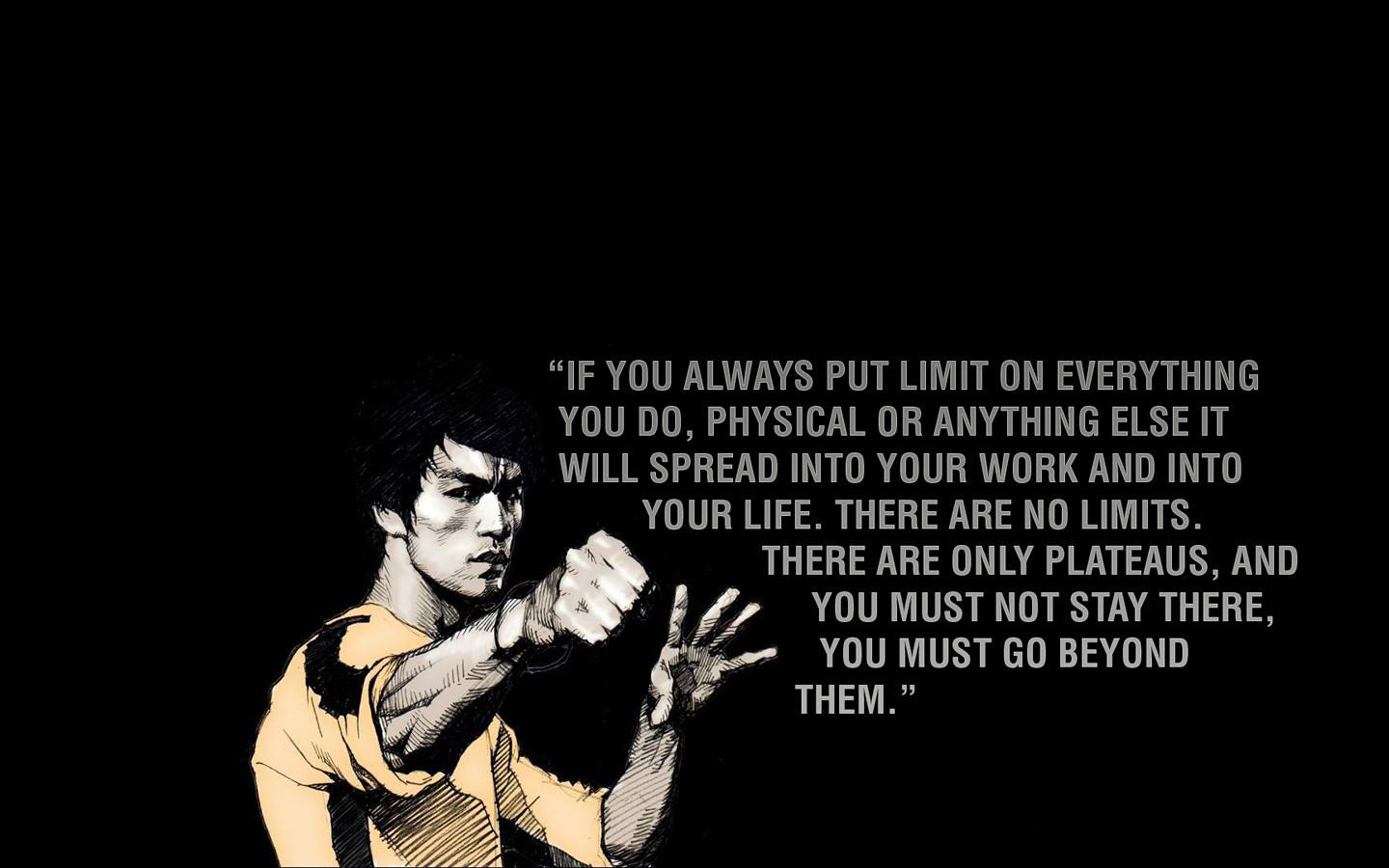 [IMAGE] There are no limitations