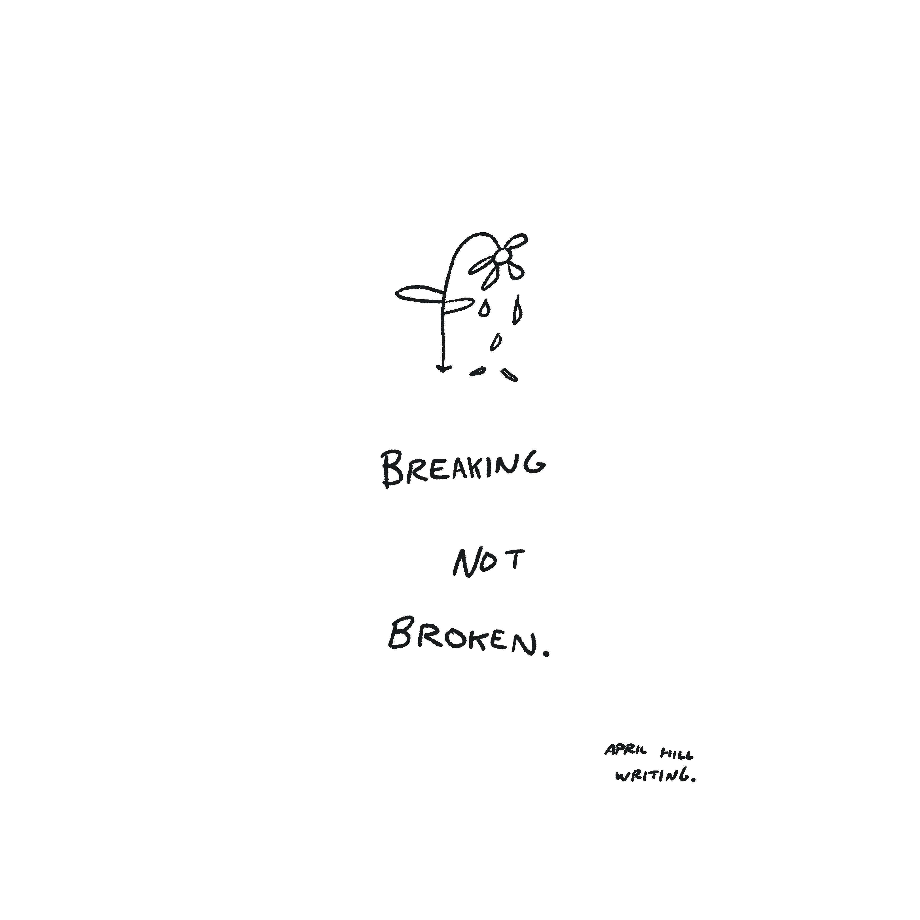 [Image] Breaking Not Broken. Keep going.
